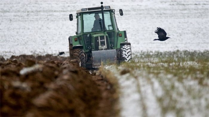 Loans offered to farmers early in light of possible no deal Brexit