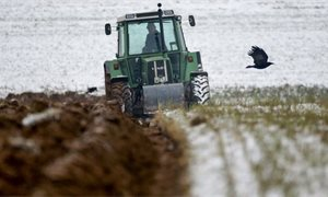 Scottish farming sector could reduce emissions by 38 per cent by 2045, finds WWF Scotland