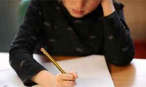 Provision for additional support needs in schools 'inadequate' warns committee
